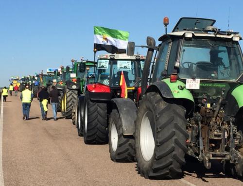 AGRO – La Unión Extremadura comienza una campaña de protesta con una tractorada el 19 de Diciembre a las puertas de la sede de Presidencia.