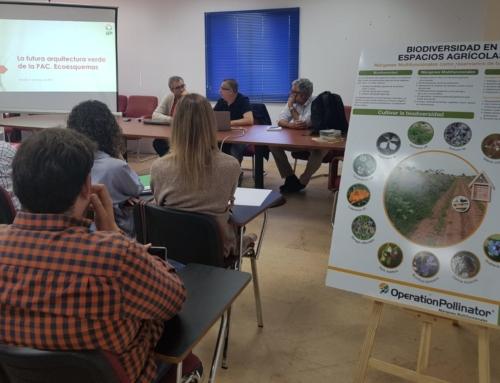AGRO – UPA-UCE lanza un proyecto pionero para incrementar la población de insectos polinizadores
