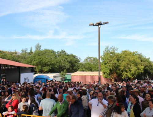 LOS SANTOS DE MAIMONA – Miles de romeros han disfrutado de una gran Romería de San Isidro.
