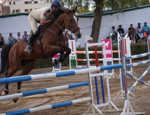 """ZAFRA – El capitán de caballería Borja Herráiz de Castro, con la yegua """"Grieta"""", se alzó con el primer premio del XLII Concurso Hípico"""