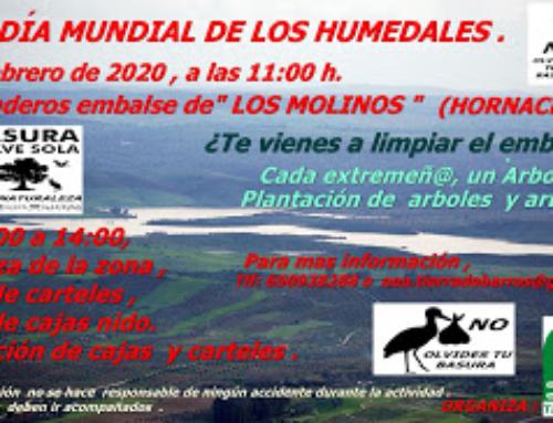 """HORNACHOS – Ecologistas en Acción Tierra de Barros muestra su preocupación por el grave deterioro y destrucción de los humedales y hará una jornada de sensibilización y limpieza en la """"Presa de los Molinos""""."""