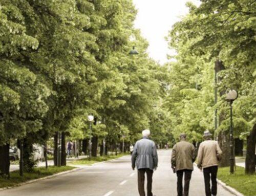 POLÍTICAS SOCIALES – Extremadura registró 228.907 pensiones en septiembre, un 0,11% más que hace un año, con una cuantía de 844,89 euros