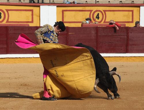 TAUROMAQUIA – Finalizan las clases prácticas de la Escuela Taurina de la Diputación de Badajoz