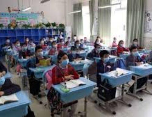 EDUCACIÓN – Educación recibe casi 83.000 solicitudes para la convocatoria de listas extraordinarias de 48 especialidades docentes