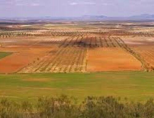 DESARROLLO RURAL – Begoña García traslada en la Asamblea 'las realidades del proyecto de regadío Tierra de Barros'