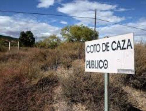 MEDIO AMBIENTE – El DOE publica el listado provisional del sorteo de caza en terrenos cinegéticos de gestión pública en Extremadura