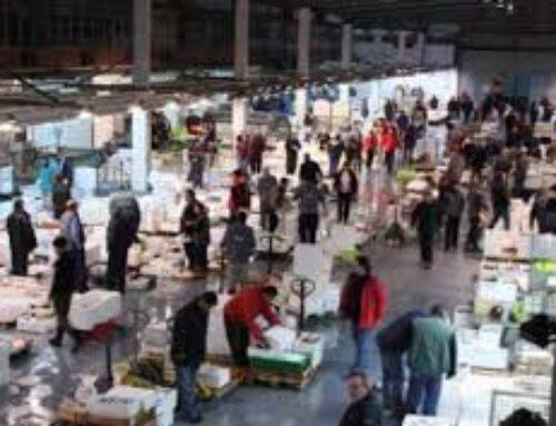 ECONOMÍA – Extremadura Avante lanza un programa de formación para comerciantes de los mercados de abastos