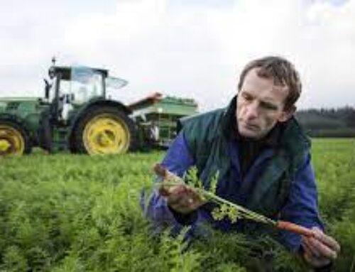 """AGRO – APAG Extremadura Asaja afirma """"La subida del paro en Agricultura es la demostración del maltrato del Gobierno a las políticas agrarias"""""""