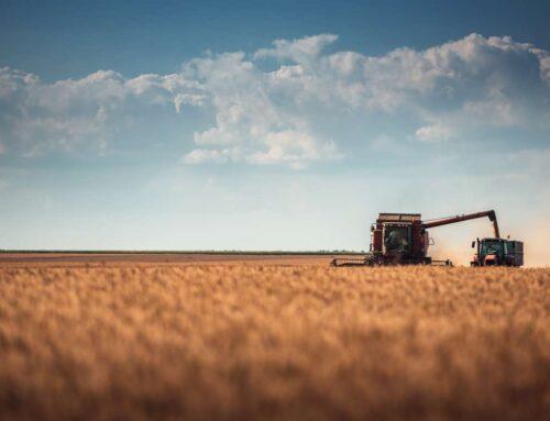AGRO – La Consejería de Agricultura comienza a abonar las ayudas a la agricultura ecológica solicitadas en 2020
