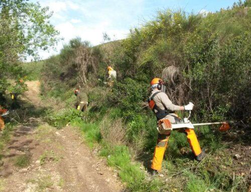 DESARROLLO RURAL – La Junta de Extremadura publica la lista de espera de la categoría de bombero forestal conductor
