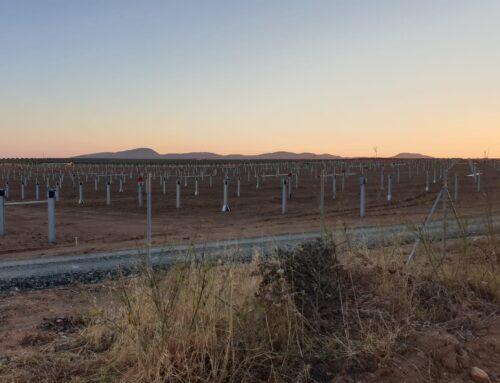 TRABAJO – El Sindicato 25 de marzo denuncia impagos e irregularidades en los parques solares de Arroyo de San Serván y Solana de los Barros