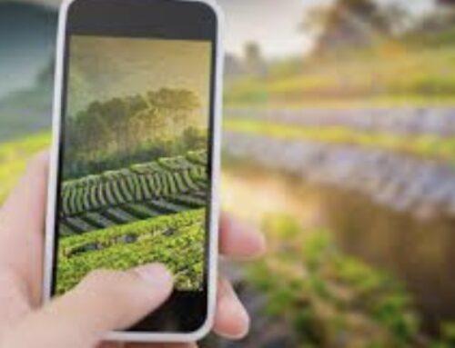 ECONOMIA – La Conferencia Sectorial de Agricultura acuerda el reparto de 4,9 millones de euros a Extremadura para medidas de desarrollo rural y digitalización