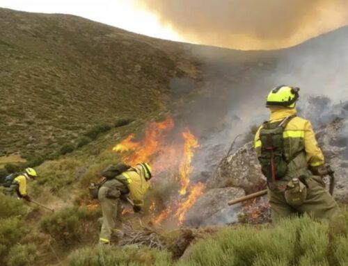 DESARROLLO RURAL – Los incendios forestales han afectado este verano a 5.214 hectáreas en Extremadura, un 25 por ciento menos que en 2020