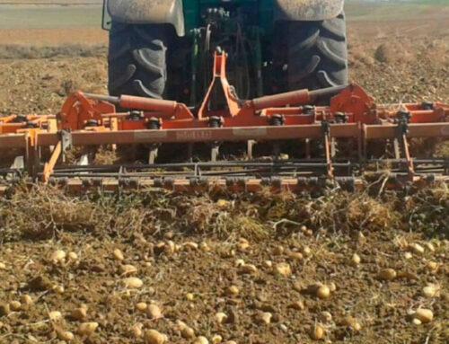 AGRO –  En seis años, los precios agrarios percibidos por los productores han aumentado un 3,97% pero los pagados por ellos un 9,21%